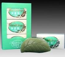 biwa-soap